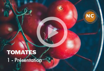 Tomates Mozzarella - 1 - Présentation
